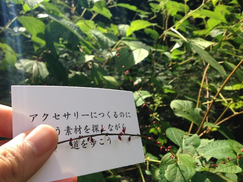 IMG_6456_l