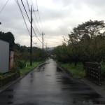 西へと続く道(朝)