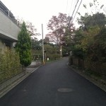 東へと続く道(夕方)